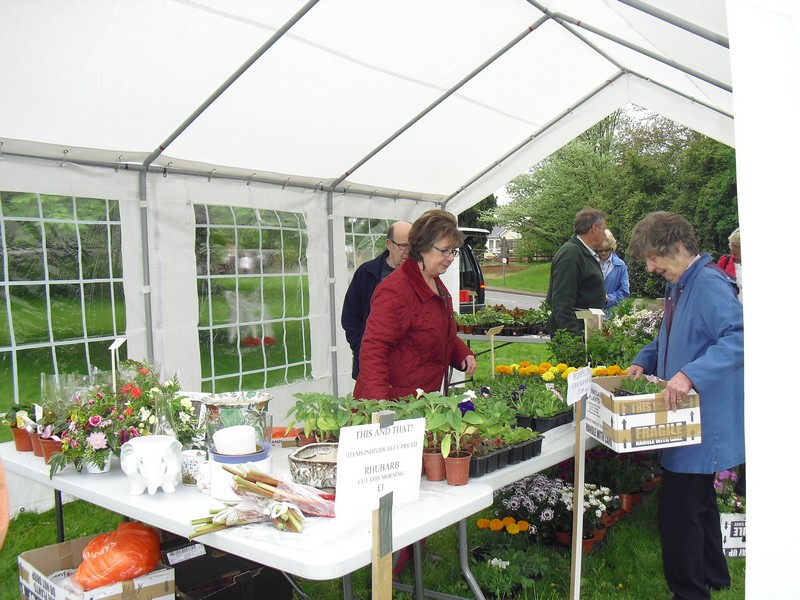 Plant Sale May 2013 012